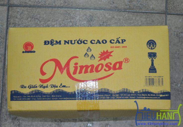 Đệm nước MIMOSA